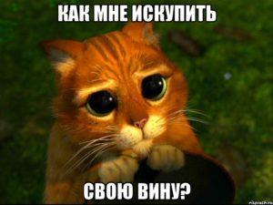 kak_iskupit_vinu